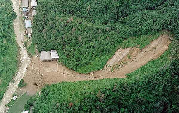伐採地で発生した表層崩壊:左に見える川は八幡川。(1999年7月1日撮影)
