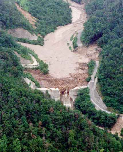流木の流出を抑えた砂防ダム:大量の流木が鋼管製のB型スリットに捕捉された。(1999年7月1日撮影)