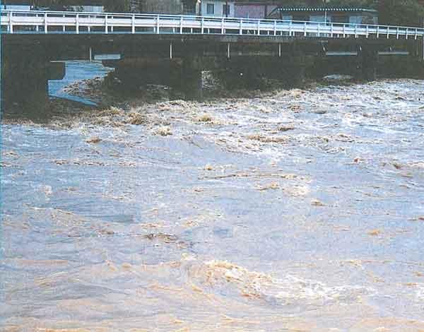 永久橋の状況:梅雨前線は、29日午後から30日にかけて日本海沿岸を北東進した低気圧の影響を受けて活発になり、愛知県、岐阜県の各地で大雨を降らせた。特に29日夜から30日早朝にかけては、愛知県内で所により1時間に50mmを越える激しい雨となった。岐阜県における被害は、土岐市を中心に床上、床下浸水が発生し、負傷者2人、被災家屋は1棟(愛知県)、120棟(岐阜県)など甚大な被害をもたらした。