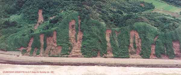 出雲崎町国道402号沿いの表層崩壊 地質的には西山層分布域(泥岩)(2004年7月18日撮影)