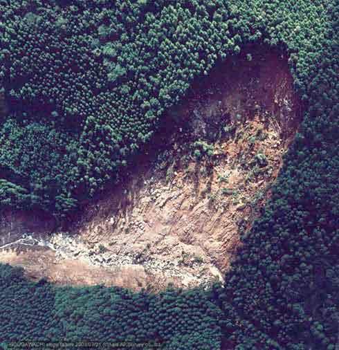 土石流発生域の崩壊垂直写真:土石流の発生源となった馬蹄形の崩壊地の拡大画像。崩壊地内部には、巨レキを含む土砂が堆積しているが、一部樹木が直立しているものもみられる。右が北、左が下流。(2003年7月21日撮影)