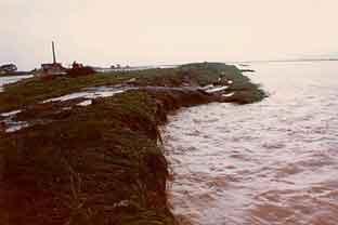 仲沖地区(本川3k100付近)の川裏法面崩壊の状況:昭和57年7月には死者3名、負傷者1名、家屋の全壊2戸、半壊11戸、水家屋2,408戸と諫早大水害につぐ被害を記録した大洪水が発生しました。