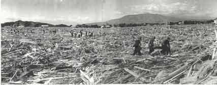 一面ガレキ、流木等に覆われた塚本:昭和33年9月の台風22号(狩野川台風)は、流域全体で死者・行方不明者853人、被災家屋6,775戸という未曾有の大災害をもたらした。