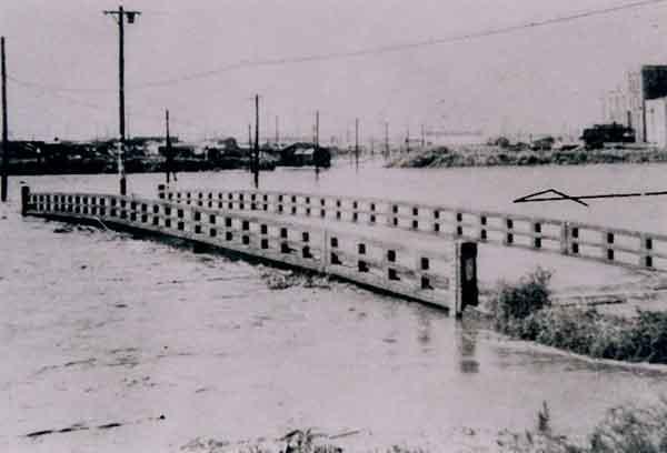 鶴見区森永橋付近:昭和33年9月に発生した狩野川台風では、戦後最大となる流域平均2日雨量343mmを記録しました。鶴見川各所で決壊し、床上・床下浸水の被害は20,000戸以上となりました。