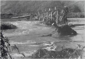 加古川町道黒田田高線の新中橋の流出(西脇市[旧黒田庄町]黒田付近):兵庫県内の降雨状況は、県北部と淡路島の南部では全般に200mm以上で、県北部の一部では300mmに達した。この雨で円山川支流の奈佐川の堤防が決壊・氾濫し、豊岡市内の約60%が浸水した。