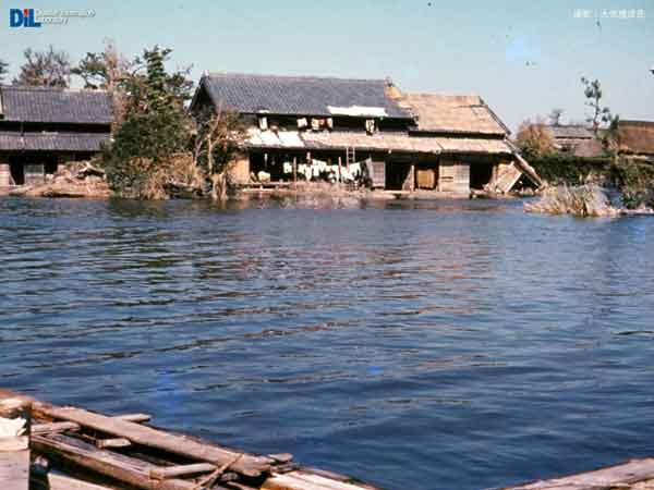 長島の浸水:伊勢湾台風 1959.09