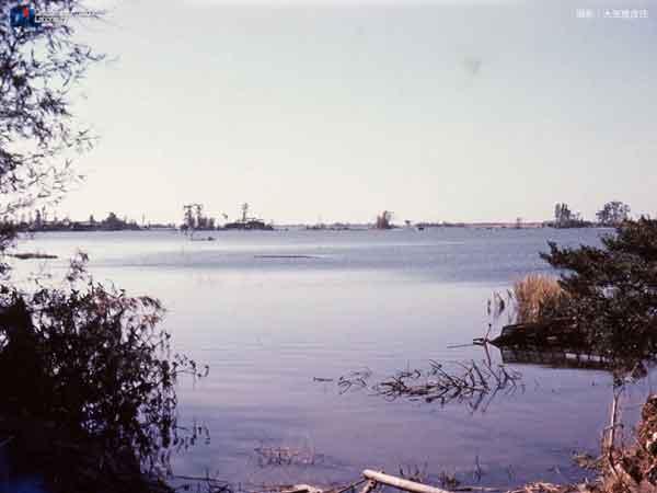 長島南部をのぞむ 1959.10.10