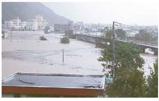 吉野川のはん濫被害(東みよし町) :吉野川では平成16年8月から10月に連続して洪水が発生しました。特に平成16年10月洪水では基準地点岩津において戦後最大流量が観測され、池田から岩津の間にある無堤地区で吉野川の氾濫が発生するとともに各所で内水(河川に排水できずに氾濫した水)氾濫による被害が発生しました。なお、吉野川の被害状況は、浸水面積7,645ha、床上浸水745戸、床下浸水1,975戸(旧吉野川は浸水面積3,120ha、床上浸水139戸、床下浸水457戸)に及びました。