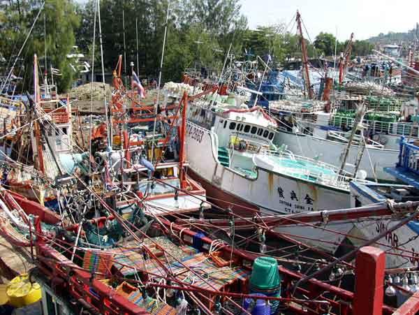 スマトラ島沖地震・インド洋巨大津波:プーケット沿岸部の被害