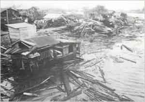 神崎川と猪名川の合流点である戸ノ内付近は、両河川の増水と高潮の影響もあり堤防上に建てられた住居が倒壊又は流失した(尼崎市戸ノ内付近):8日にマーシャル諸島の西で発生した台風は、西北西に進んで次第に発達し、12日には沖の鳥島の南東約500kmの洋上に達した。9時45分の飛行機観測によると中心気圧は988hpa、中心付近の最大風速は100m/sであった。13日には進路を北西に、14日にはさらに北に転じて沖縄に近づき、夜に沖縄の東海上を通過して、進路を次第に北北東に転じ、15日朝奄美大島を通過した。16日には四国の南海上から室戸岬を目指して進み、9時過ぎに室戸岬の西方に上陸した。その後、淡路島南西部を通って、13時30分頃、尼崎市と西宮市の間に再上陸した。台風はさらに北東進を続け、14時に京都市付近、15時に敦賀市付近を通過し、18時に能登半島東部に達した後、日本海に出て沿岸沿いに北北東に進んだ。この台風による被害は高潮と風によるものが主で、近畿地方を中心として全国に及んだ。この台風の規模は室戸、枕崎台風に次ぎ、伊勢湾台風とほぼ同じくらいであったが、人的被害は全国で200人と先の3台風に比べると非常に少なかった。兵庫県内の被害は、淡路島を含む県南部では高潮によるものが大きく、県北部では円山川をはじめ、中小河川の氾濫による水害が大きかった。