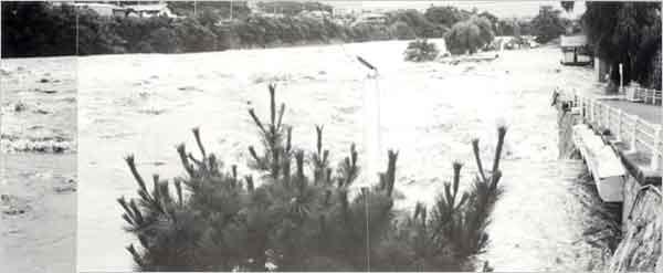 加古川の増水により滝野町の駐車場が浸水、また闘竜灘遊歩道は冠水した(加東市[旧滝野町]闘竜灘付近):台風は9日に沖縄の東海上を北上、10日に奄美大島の西をかすめた後、大陸の高気圧が日本海方面に張り出してきたため鹿児島の南西海上で一時迷走した。12日午後から次第に速度を速めて北上し、13日1時40分頃に長崎市付近へ上陸した。この間、兵庫県では大雨が降り続き、8日に淡路島南部で200mm、9日は淡路島南部と県南西部沿岸地域で100mm、10日には県南東部を除く全域で200mm以上、県南西部の沿岸地域では300~500mmという記録的な大雨が降った。11日は県南西部の県境付近で200~300mm、12日も引き続き県南西部で100mmという大雨が降り続いた。台風が九州に上陸した13日になって県南西部の大雨はやっと弱まったが、午後になって県中部で50~100mmの強雨が降った。この期間の総降水量は、県中部と南西部で500mm以上、家島では1,000mm以上という記録的な量に達し、大きな災害が発生した。