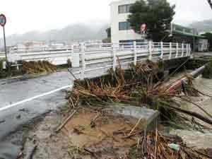 初尾川:平成23年9月13日に日本の南海上で発生した台風15号は、20日に種子島の南東海上を北東へ進み、21日には速度を上げながら和歌山県潮岬沖を通過し、同日14時頃に静岡県浜松市付近に上陸した。一方、西日本には前線が停滞しており、前線に向かって南から暖かく湿った空気が流れ込んでいた。この前線や台風を取り巻く雨雲の影響で、兵庫県内でも淡路島を中心に、各地で大雨となった。このため、最大時間雨量は、淡路市(志筑)で77mm、南あわじ市(榎列)で75mm、洲本市(都志)で65mmを記録した。また、最大24時間雨量は、淡路市(志筑)で428mm、洲本市(洲本)で373mm、南あわじ市(榎列)で335mmを記録した。兵庫県内の被害状況は、死者1人、負傷者18人、床上浸水190戸、床下浸水441戸などであった。