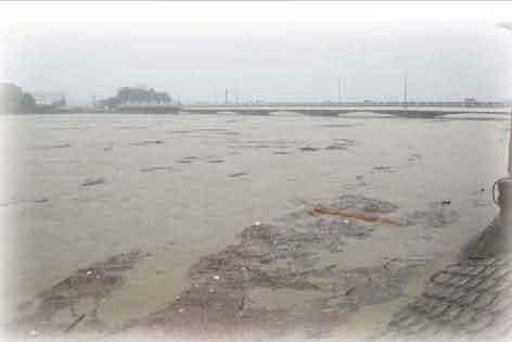 庄内川を流れる濁流(名古屋市北区 水分橋上流):台風15号の影響により、岐阜県多治見市の多治見雨量観測所では、9月20日11時から12時の1時間に64mmを記録し、9月19日18時の降り始めからの累加雨量は477mmを記録するなど、庄内川流域において大雨となった。志段味水位観測所においては、はん濫危険水位(5.50m)を約6時間にわたって超過し、堤防が越水したため、水害区域面積:1,865ha(愛知県)、16,330ha(岐阜県)、被災家屋:670棟(愛知県)、16棟(岐阜県)といった甚大な被害をもたらした。