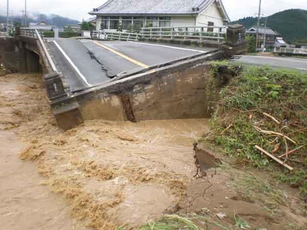 国道175号八日市橋::本州付近に停滞した前線に向かって南から暖かく湿った空気が流れ込んだ影響で、丹波市市島町(兵庫県)で最大時間雨量91mm、最大24時間雨量414mmを記録した。この大雨により、沢筋に雨水が集中し、土石流となって斜面途中の立木を巻き込み流下した。土石流は家屋や河道を埋塞させ、道路や農地にまで被害を拡大させた。