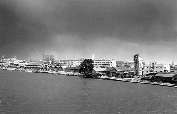 八千代橋下流右岸(撮影日時:1964年6月18日13:00)