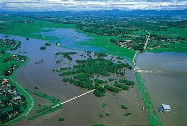 決壊した筑西市赤浜地先:昭和61年8月の台風10号がもたらした豪雨で、24時間雨量300mmという記録的な集中豪雨に見舞われた小貝川が破堤に至ったのは、台風一過で快晴という天気の下でした。雨が上がった安堵感につかっている人々の目の前で、小貝川の水位は留まる気配を見せずに上昇し、ついには明野町赤浜(現在の筑西市赤浜)地先で溢水し、氾濫水が流域を襲いました。無堤地区からも濁流が流れ込み、下館市(現在の筑西市)の約1/4が浸水しました。さらに下流の石下町(現在の常総市)において漏水から堤防が決壊するに至り、被害は4,300ha、浸水家屋4,500戸に及びました。この災害を契機に、被害の大きかった母子島(はこじま)地区を遊水地に造成するとともに、その地区内に点在していた5集落を集団移転させ、遊水地内に新しい町をつくるという全国でも例のない改修事業を行いました。