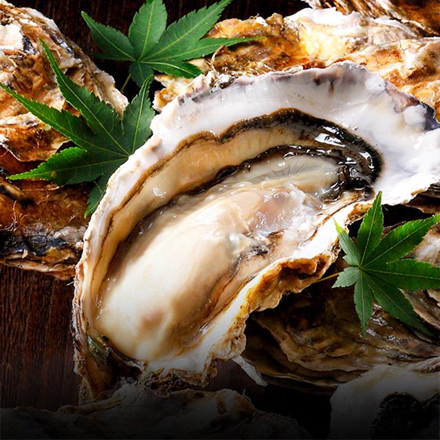 厚岸産生牡蠣の写真