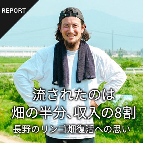 畑の半分、収入の8割が流された長野県・豊野町で持続可能なリンゴ栽培を目指す