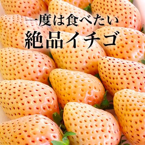 今が旬。エールマーケットがオススメする 一度は食べたい「絶品イチゴ」