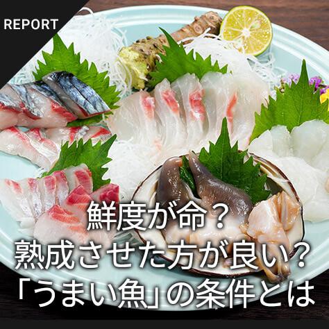 鮮度が命?熟成させた方が良い?「うまい魚」の条件とは