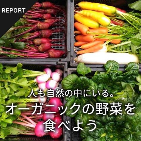 人も自然の中にいる。オーガニックの野菜を食べよう