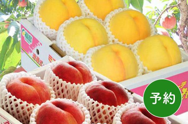 伊達の桃&黄桃セット