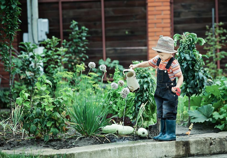 おうち時間で種まきしよう。楽しく生態系も豊かにするプロジェクト2選(外部サイト)