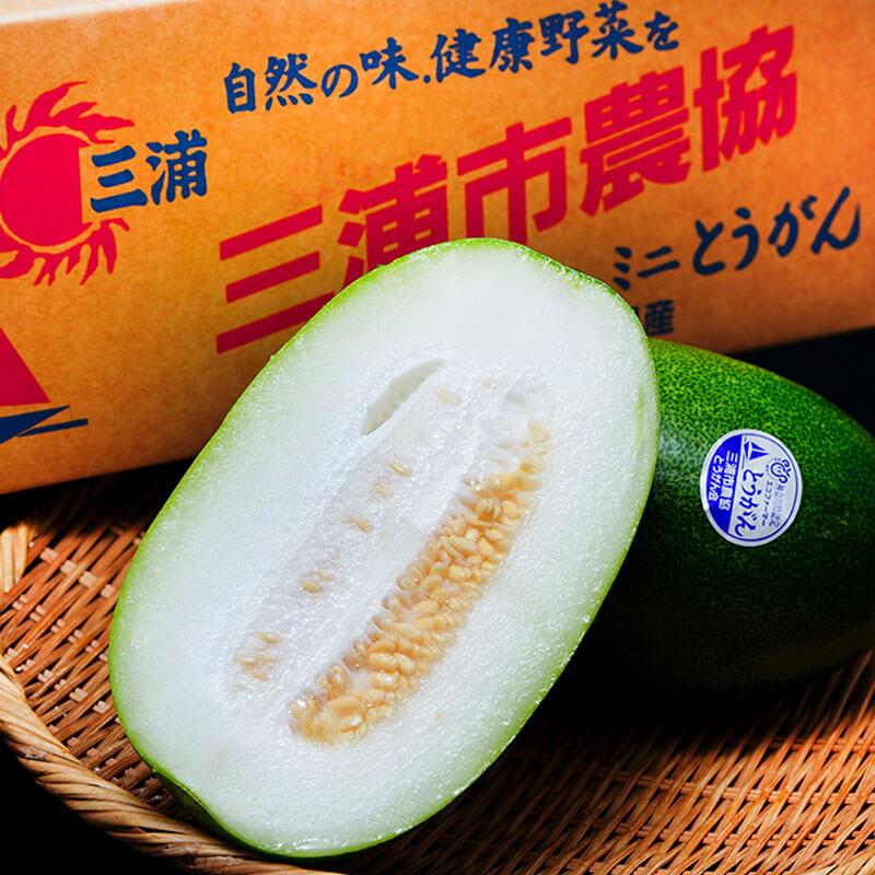 上品な味わい「ミニ冬瓜」