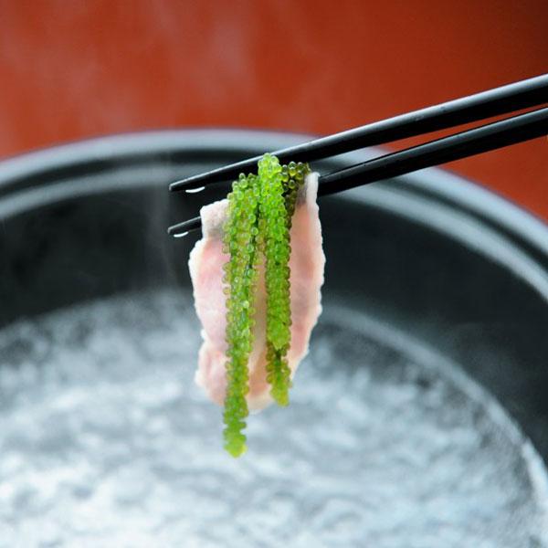 沖縄県産 海ぶどう(養殖)