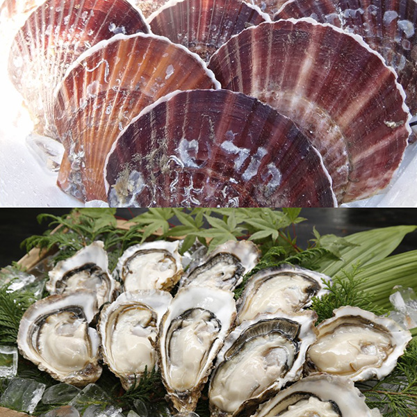 殻付き ホタテ・牡蠣セット