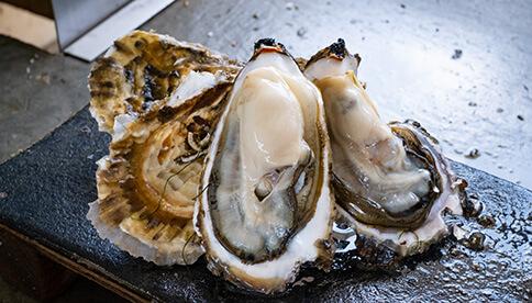 石巻・長面浦産の殻付き牡蠣