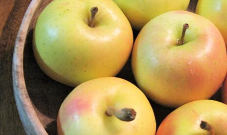 訳あり「トキ」リンゴ