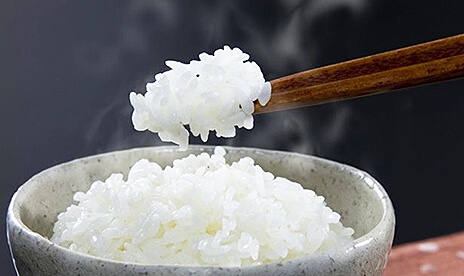 コシヒカリ10kg 選べる精米