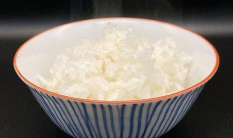 魚のゆりかご水田米 白米10kg