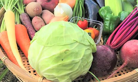 びわ湖が恋する野菜たち