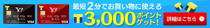 最短2分でお買い物に使える3,000ポイント