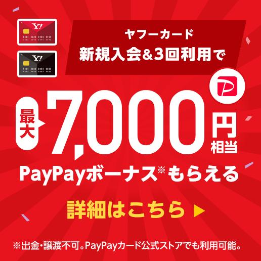 Yahoo! JAPANカード(年会費永年無料)