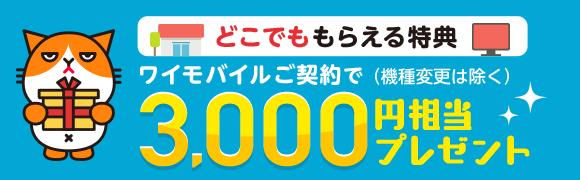どこでももらえる特典 ワイモバイルご契約で 3,000円相当プレゼント(機種変更は除く)
